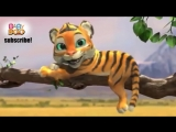 Tiger Boo