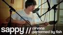 Sappy cover - Nirvana (acoustic - 2013)