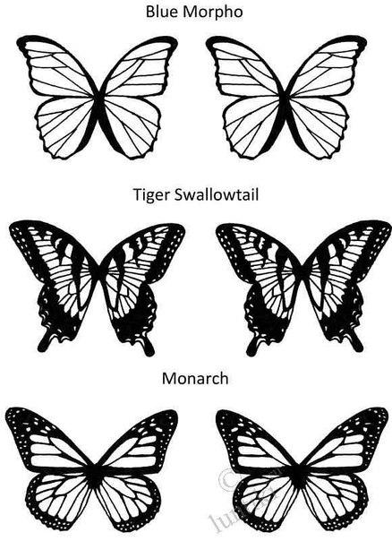 шаблоны на бабочек из