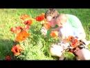 Александр Строгов поздравляет Кирилла с Днем Рождения