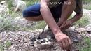 Поиск золота в камнях и горной породе