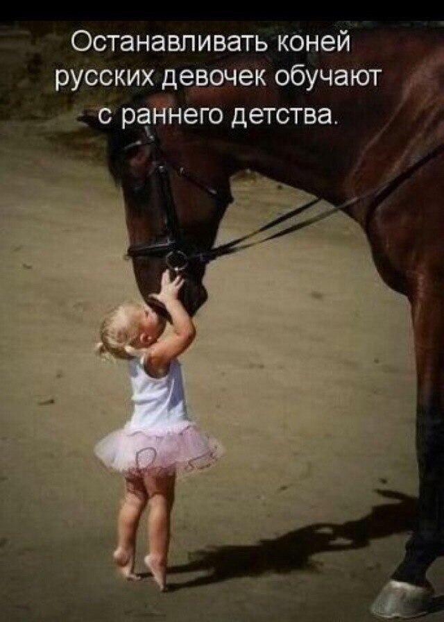 https://pp.userapi.com/c7003/v7003134/38bf1/PV2umWpg9qs.jpg