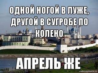 РЕФЕРАТЫ КУРСОВЫЕ КАЗАНЬ ВКонтакте Типичные мемы