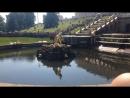 Запуск фонтанов в 1100, Петергоф