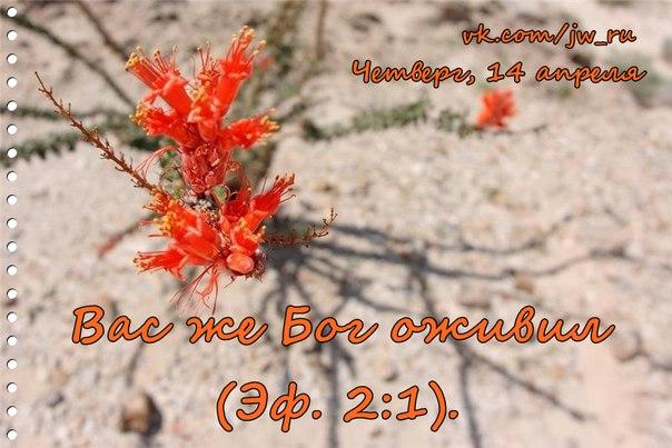 Исследуем Писания каждый день 2016 - Страница 4 Vllw6ZrmiyE