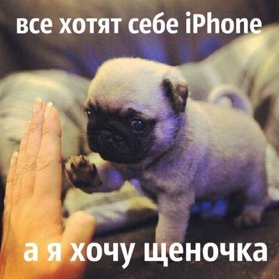 Аліна Павлик, 26 июня , Львов, id148930260
