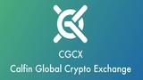 CGCX ICO Обзор гибридная торговая платформа нового поколения. TOP ICO 2018 #BOUNTY #ICO #CGCX