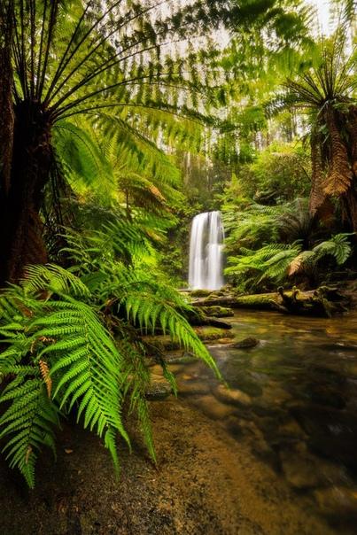 Водопад Бьючемп, Национальный парк Грейт-Отуэй, Виктория, Австралия