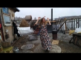 Танцы с моржами..)