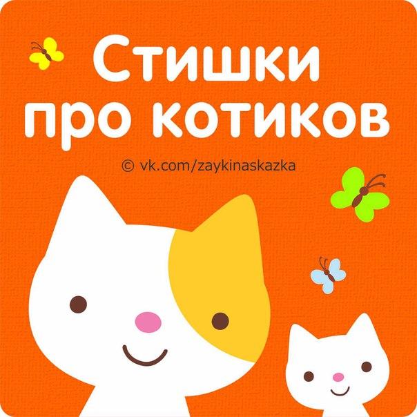 Стихи про кошек