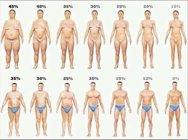 продукты для похудения 4 группа крови