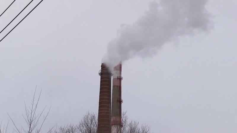 Вырубка 2019 Чтобы проложить теплотрассу в Тольятти вырубят 4 га соснового леса