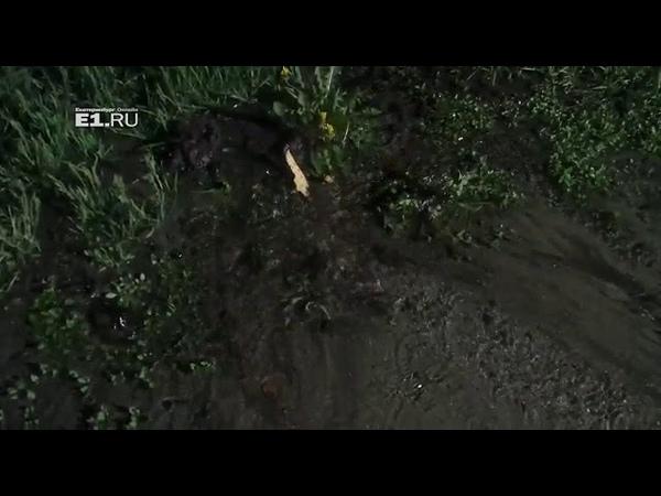 Прорвало трубу на улице Новгородцевой