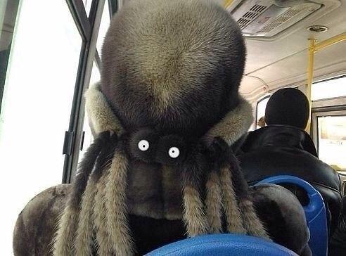 Сидишь себе в автобусе.. Дремлешь.. Просыпаешься, а тут такое!)