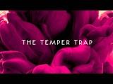 The Temper Trap - Trembling Hands (acoustic)