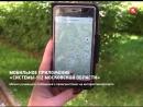 Мобильное приложение Системы 112 Московской области