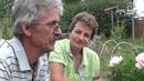 Пионы ИТО гибриды Коллекция Юрия Лукоянова Сайт Садовый мир