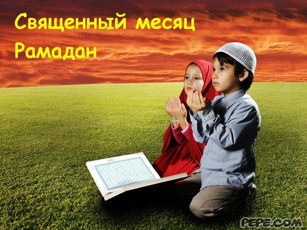 http://cs616627.vk.me/v616627623/10a4c/kNFPy-UX3Yk.jpg