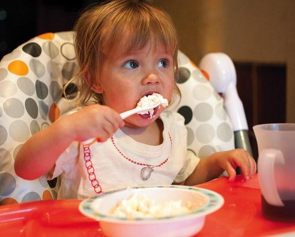 Творог в домашних условиях дети до года