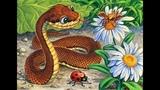 Когда год Змеи 229