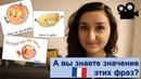 Урок 169 Разговорный французский по фильмам и песням Картошка персик лук фасоль и цветок