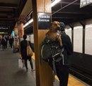 В Нью-Йоркском метро отныне запрещено провозить крупных собак.