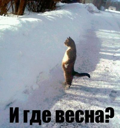 Миша Левин, 22 декабря 1971, Санкт-Петербург, id221376414