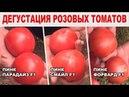 Дегустация розовых томатов 17 05 2018