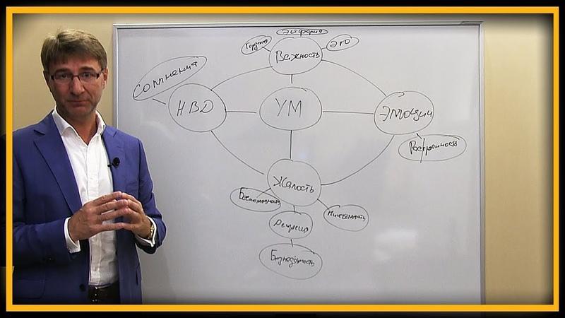 Развитие и Личностный Рост: психология личности, управление стрессом и самопознание | Сергей Змеев