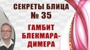 Гамбит Блэкмара Димера Секреты блица 35 Игорь Немцев шахматы