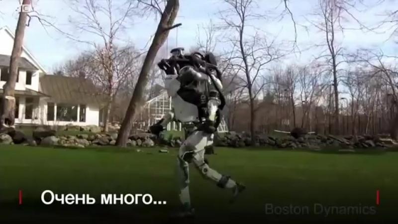 Этот робот готов на многое, чтобы его перестали толкать.