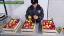 На границе выявлен факт легализации запрещенной к ввозу в Россию продукции