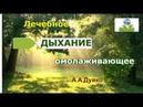 Лечебное дыхание которое омолаживает и продлевает жизнь Андрей Дуйко Путь к себе через эзотерику