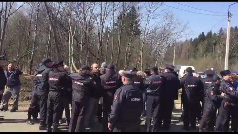 Волоколамск Столкновения с полицией. Ядрово.