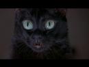 Очень страшное кино 2 BDRip 2001