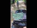 Том, Джей, Оди и Женевьев в парке