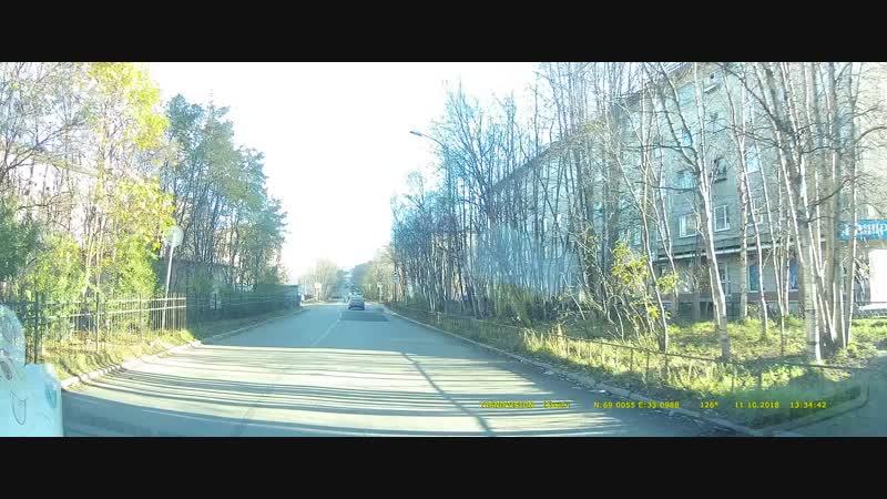 Умная собака на пешеходном переходе в Мурманске