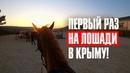 Первый раз на лошади по Крыму! Раскрыл в себе Джанго Освобожденного.