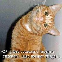 Angel Like, 6 сентября 1999, Яхрома, id209249191