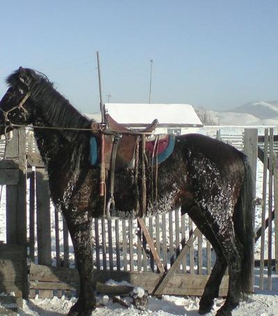 Ай-Херел Манмаш, 20 декабря 1999, Беломорск, id203208376
