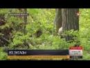 Курс выживания для снайперов в окружении «врага» кадры учений под Воронежем
