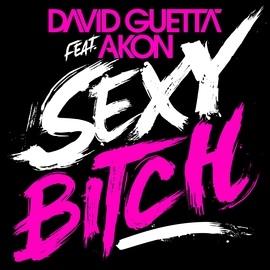 David Guetta альбом Sexy Bitch