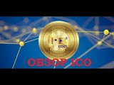MB8COIN ОБЗОР ICO