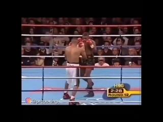 Когда в ринге встретились два опасных нокаутера. феликс тринидад против фернандо варгаса.
