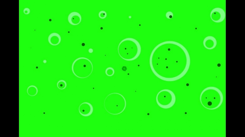 тест бактерии (коки)