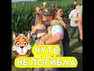 Пёс сделал всё, чтобы спасти девочку!