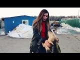 Анна Седокова посетила приют для собак. Анна предлагает всем желающим забрать пи