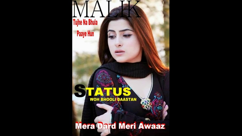 Status Mera Dard Meri Awaaz Woh Bhooli Daastan Cover By Malik Akhtar