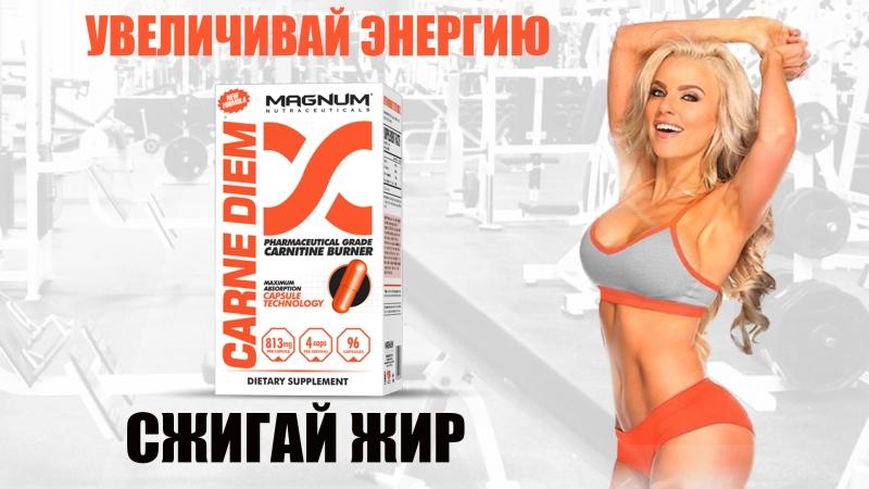 Карнитин от Magnum | Фармацевтический карнитин