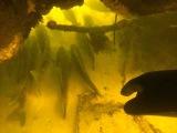 подводная охота на судака  без ружья с камерой